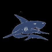 MGD Logo - Shark