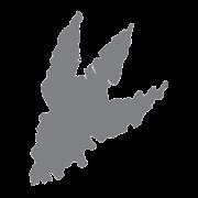 TRX Logo - Footprint